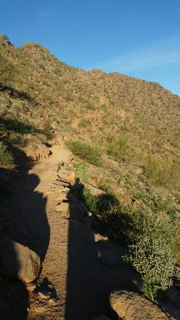 The Cibola Trail