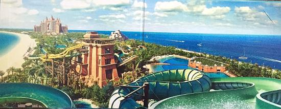 Atlantis The Palm Water Park Swim With Dolphin And Hotel