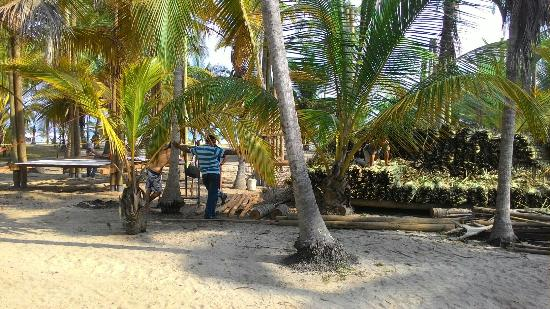 Magdalena Department, โคลอมเบีย: Costeno Beach Surf Camp