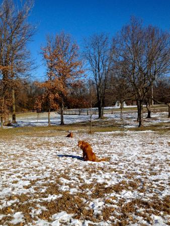 Indian Hills Park