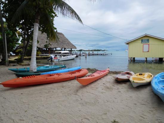 Paradise Vacation Hotel foto