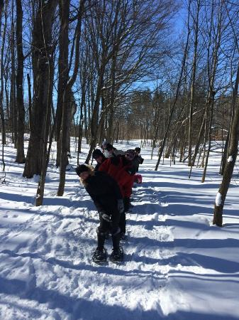 Carriage Hills Resort: Snow Shoeing on Sunday Feb. 14th! Photo taken by Julie our tour guide at Carriage Hills