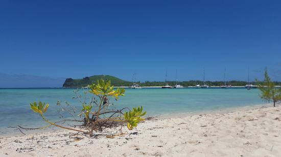 Bon Voyage Mauritius: 20160216_111652_large.jpg