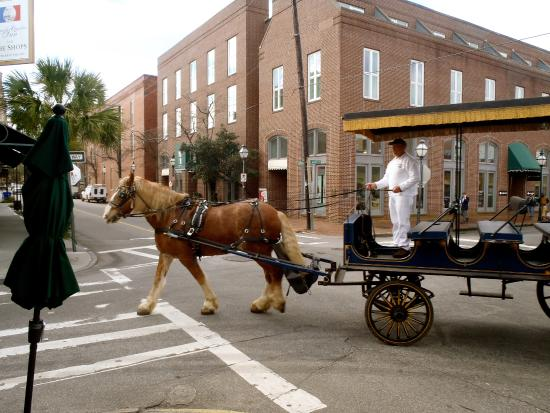 take a tour on the horse drawn carriage picture of charleston rh tripadvisor ca