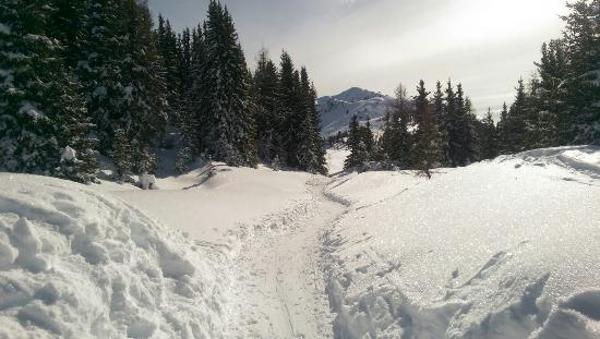 Bruson Ski Area
