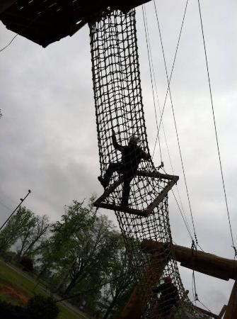 The Beanstalk Journey Zipline: photo0.jpg