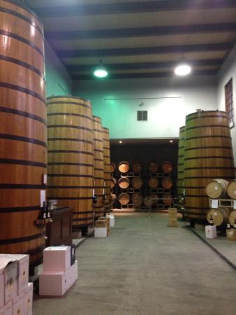 Clos Pegase Winery 사진