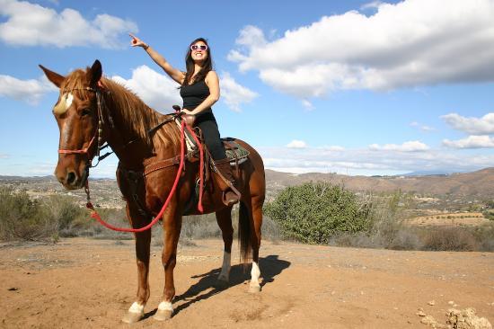 Vin Hesten Trail Rides