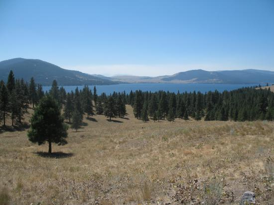 Wild Horse Island State Park : Surrounded by Flathead Lake