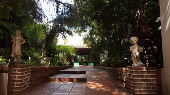 Caseron Porteno B&B: jardines