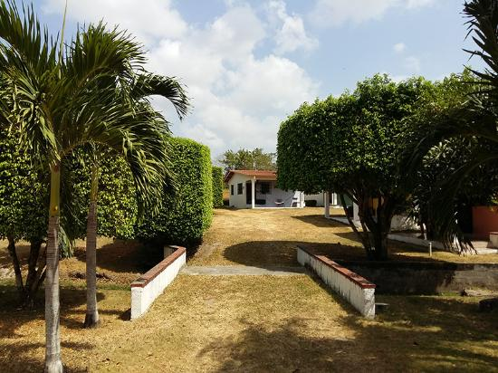 The Mango Tree Hostel