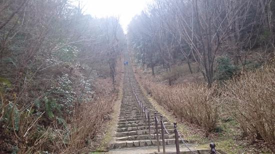 二上山ふるさと公園, 下から、石段を見上げた