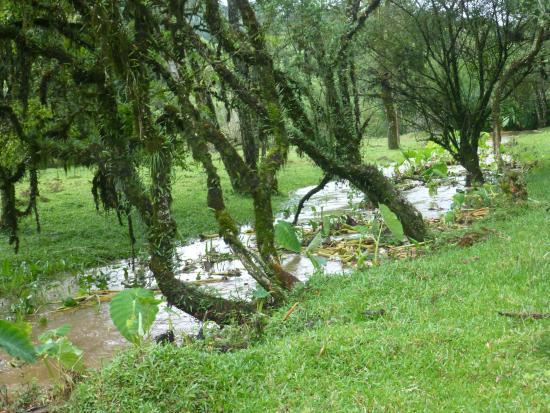Caminhos Do Sertão Cicloturismo: riacho - urubici