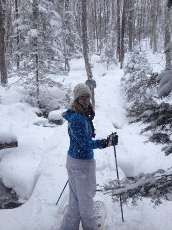 Dreamscapes Bed & Breakfast: Snowshoeing on the property is excellent.