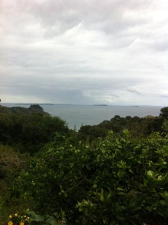 Isla Waiheke, Nueva Zelanda: Right hand side of Palm Beach