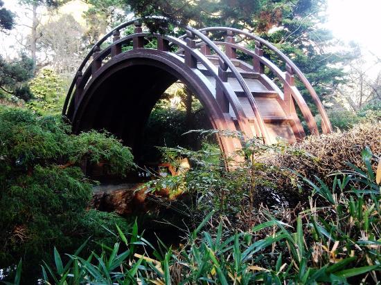 The Moon Bridge Picture Of Japanese Tea Garden San