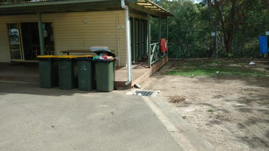 Melbourne BIG4 Holiday Park: overfull bin and rubbish on ground