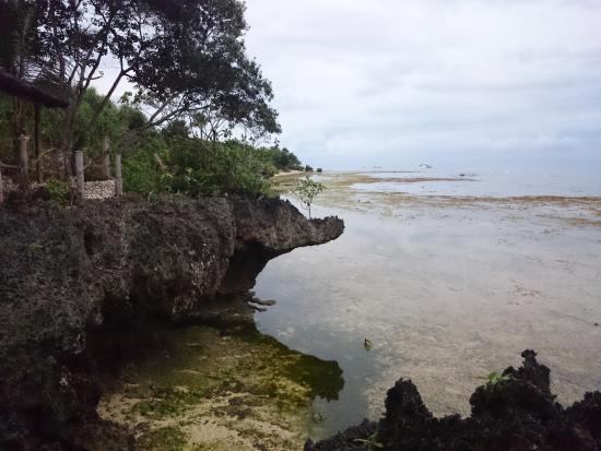 Royal Cliff Restaurant: cliff