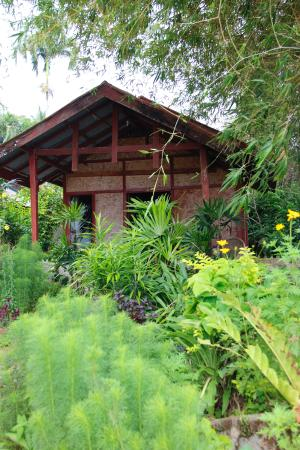 Arlen Nova's Paradise Guesthouse: Bungalow