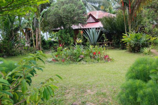 Arlen Nova's Paradise Guesthouse: Im Garten