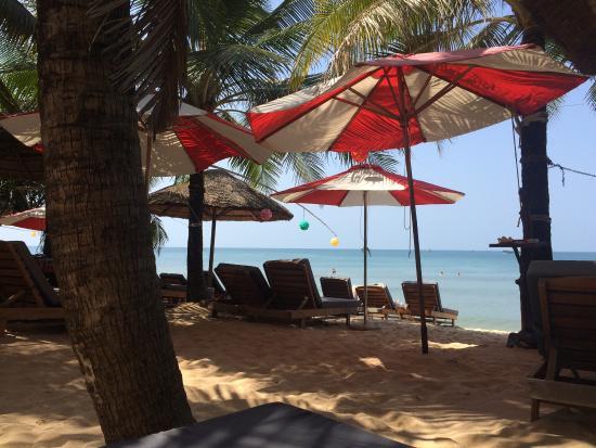 Фотография Coral Bay Resort