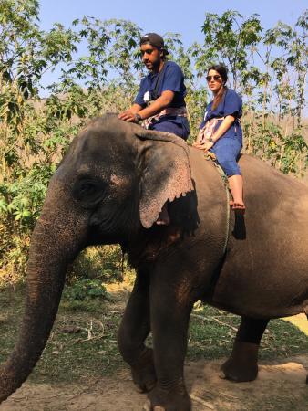 Elephant Carer Home: Un esperienza da vivere a pieno, abbiamo fatto mezza giornata dovessi tornare farei tutto un gio