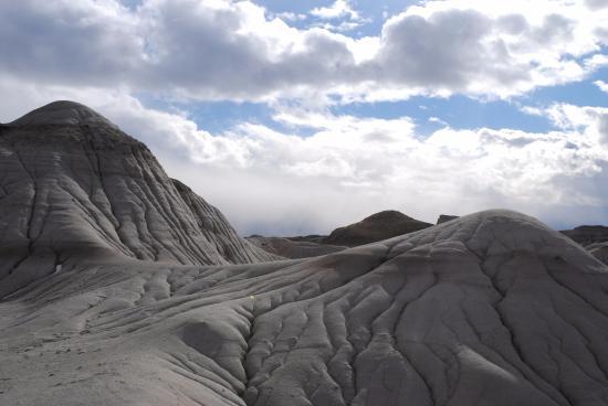 Dinosaur Provincial Park: Juste un aperçu de près