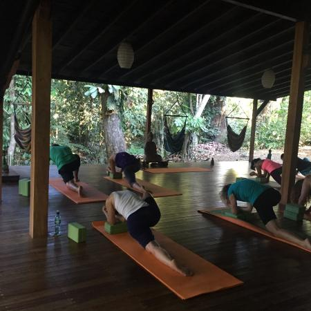 Vida Asana Eco-Retreat and Yoga Center: Morning Yin Yoga Class