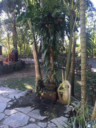 Vida Asana Eco-Retreat and Yoga Center: Outdoor shower next to the pool