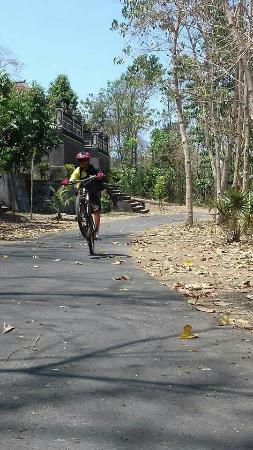 Bali C Bike: Balicbike