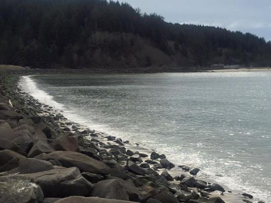 Winchester Bay RV Resort: Breaker wall right off the site and walking trail