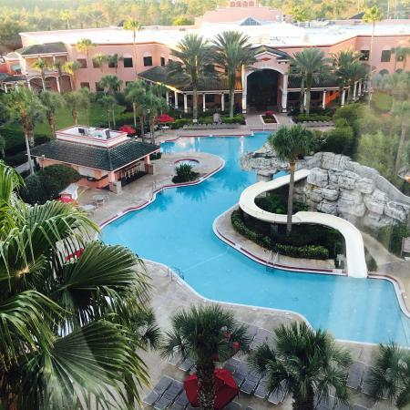 Pool - Caribe Royale Orlando Photo