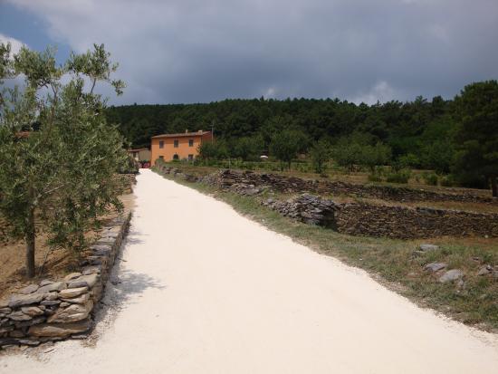 Il Palasso in Cima alla Serra - Tuscany Country House