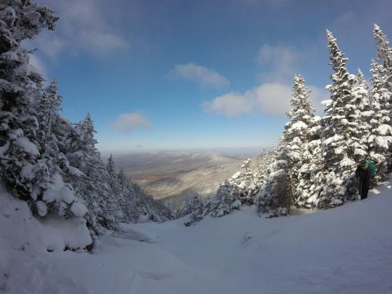 Twin Mountain, NH: View from treeline