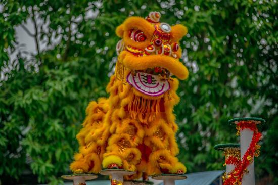 Wong Fei Hung Lion Dance Martial Arts Museum : Dança dos dragões