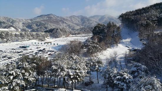 Hoengseong-gun South Korea  city pictures gallery : Welli Hilli Park Hoengseong gun, South Korea : See Reviews and 23 ...