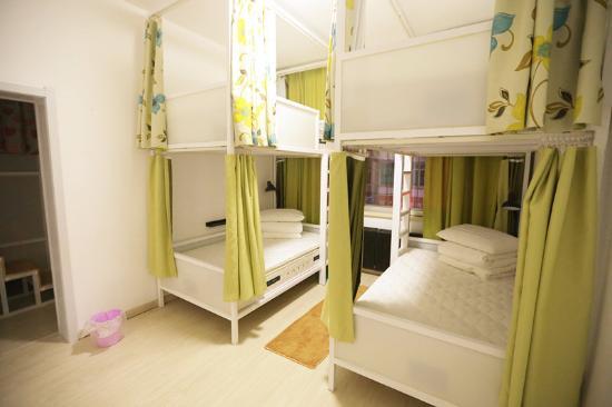 Lazy Bee International Hostel