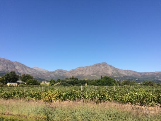 Franschhoek, Sudáfrica: Ambiente agradável e tranquilo!