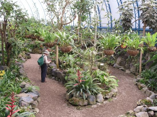 Orchid House at Quito Botanical Garden at La Carolina - Picture of ...