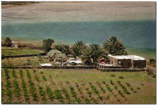 Azienda agricola Marai