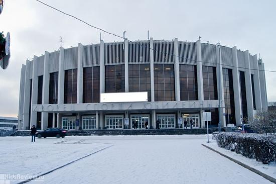 Ice Hockey Sport Palace
