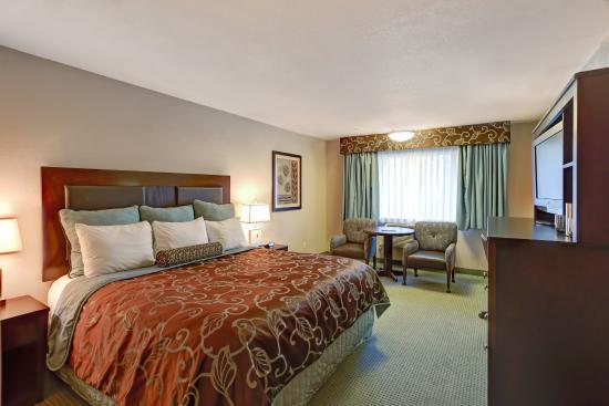Shilo Inn Hotel & Suites - Beaverton: Single King