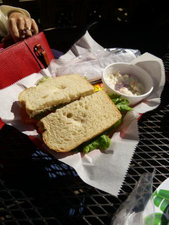 Happy Tomato Cafe: Plane Jane ( Tomato Sandwich)