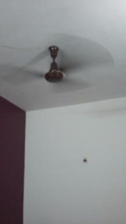 Falcon Resorts: Вентилятор.))