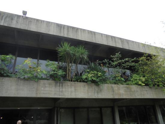 Calouste Gulbenkian Foundation Garden