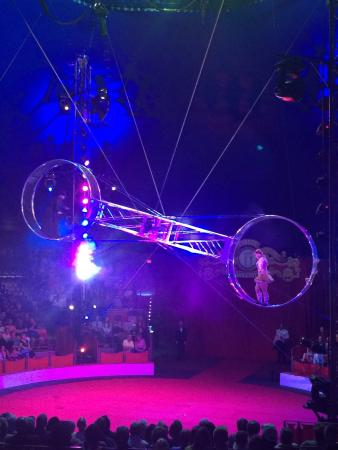 Circus Sarasota: Red, white and Bello!!