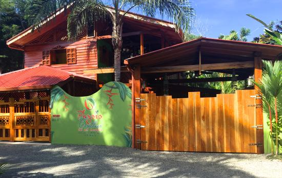 Physis Caribbean Bed & Breakfast: Hotel Entrance