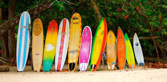 Physis Caribbean Bed & Breakfast: Surfing lessons available