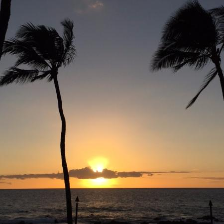 Mana Kai Maui: Palms provide a bit of shade during the day and a bit of tropical vibe at sunset.