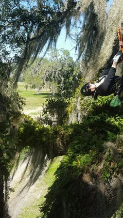 Tree climbing with Canopy Climbers